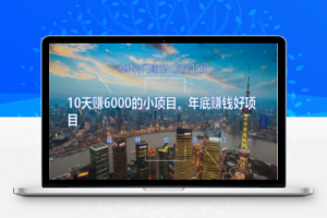 【28期】晓林冷门赚钱第15招10天赚6000的小项目,年底赚钱好项目