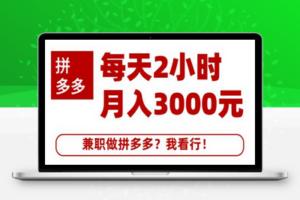 【292期】搜外网·拼多多副业课程,每天2小时月入3000元 学习这门课程真的能赚钱